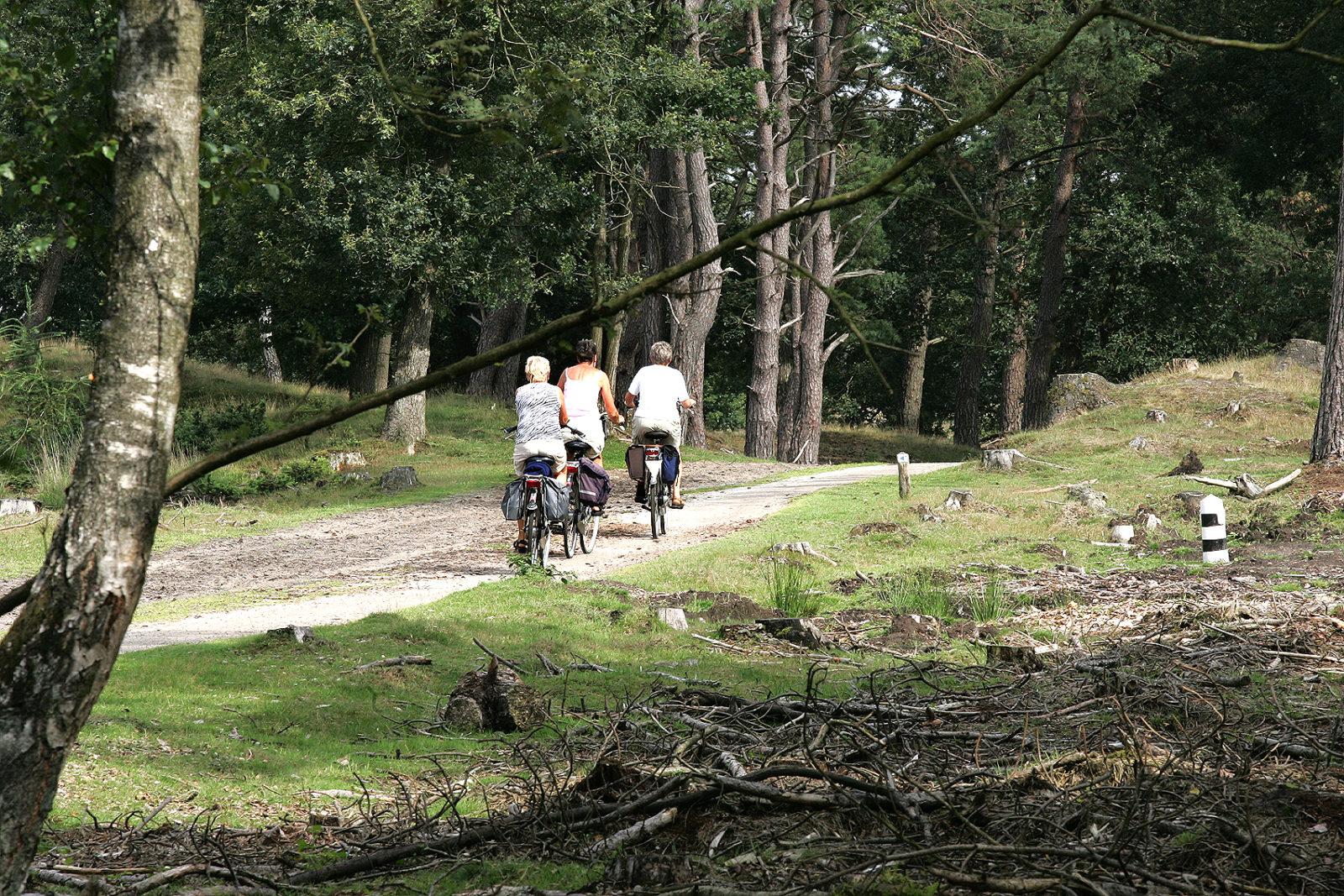 Fietsers fietsen Drenthe binnen foto Piet Bosma